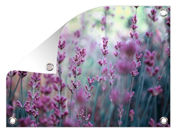 natuurfoto op tuinposter